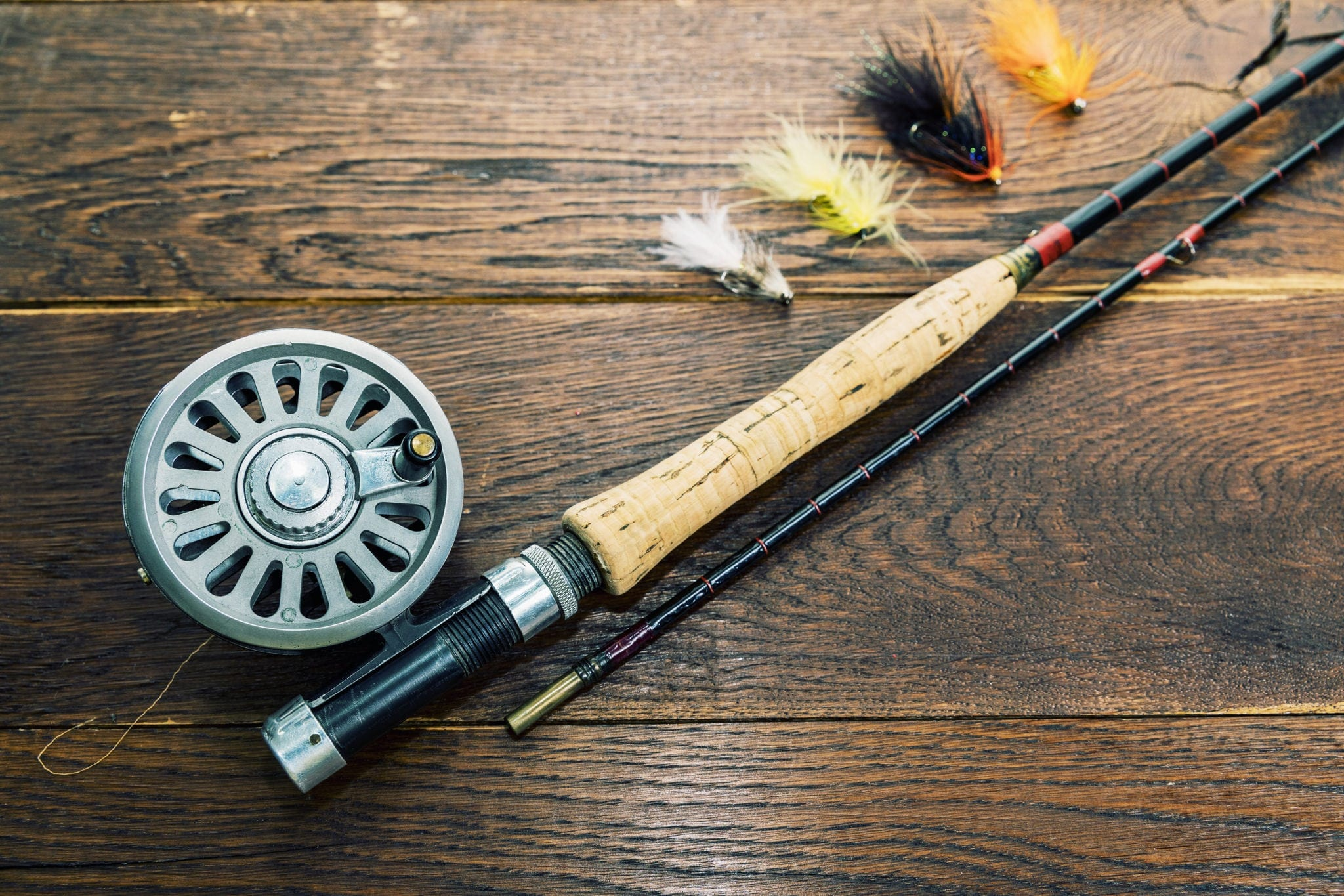 Fishing rod, reel and lures.