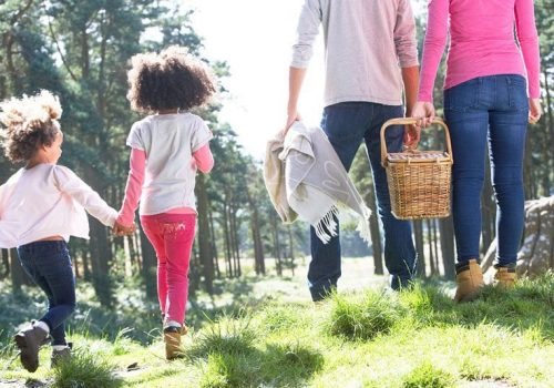 family with picnic basket walking.